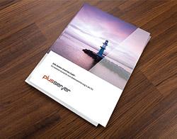 Whitepaper Safe Harbor downloaden